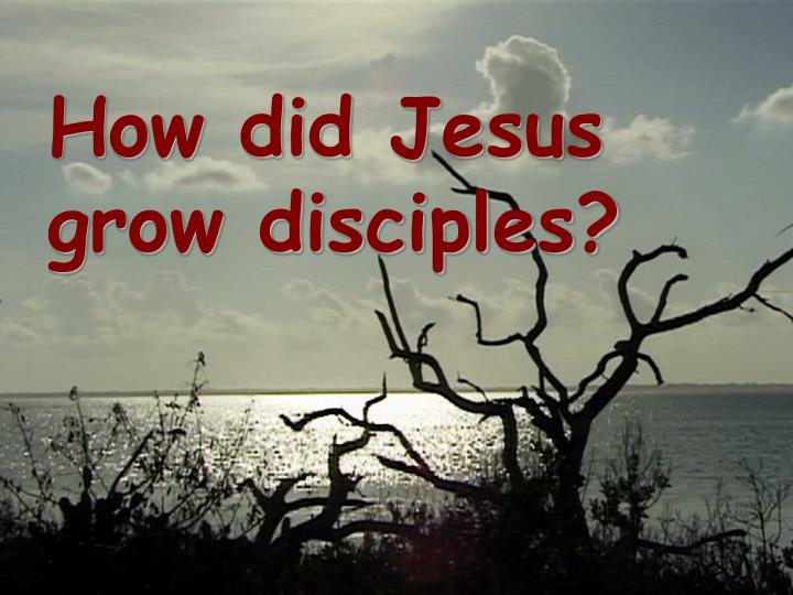 How did jesus grow disciples
