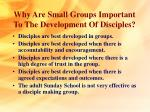 why are small groups important to the development of disciples