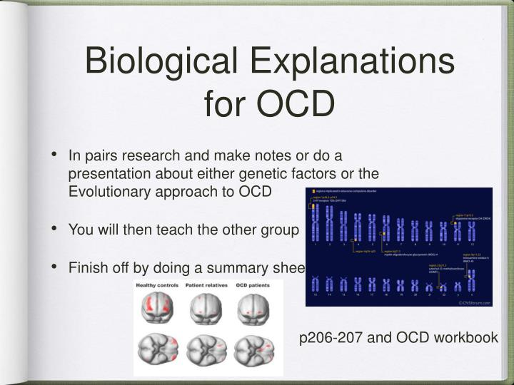 Biological Explanations for OCD