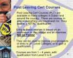 post leaving cert courses