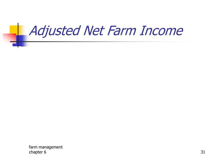Adjusted Net Farm Income