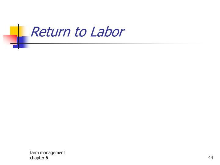 Return to Labor