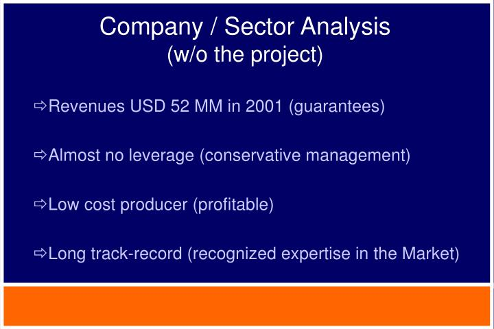 Company / Sector Analysis