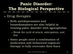 panic disorder the biological perspective4