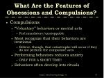 what are the features of obsessions and compulsions1