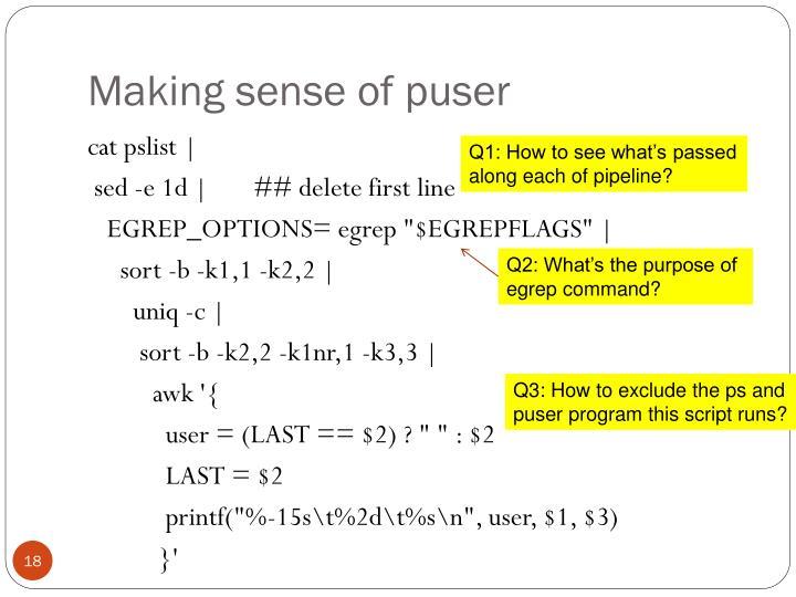 Making sense of puser