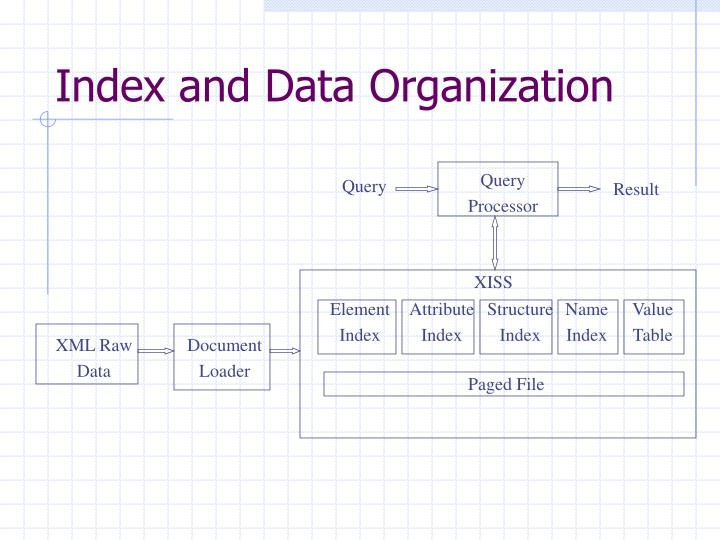 Index and Data Organization
