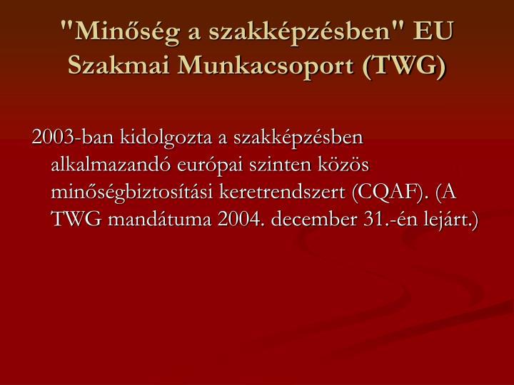 """""""Minőség a szakképzésben"""" EU Szakmai Munkacsoport (TWG)"""