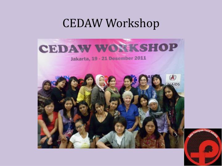 CEDAW Workshop
