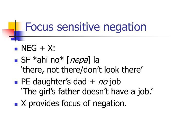 Focus sensitive negation