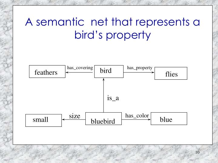 A semantic  net that represents a bird's property