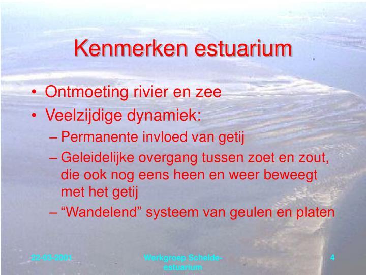Kenmerken estuarium