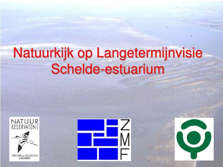 natuurkijk op langetermijnvisie schelde estuarium