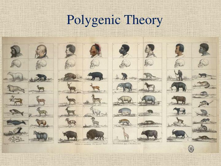 Polygenic Theory