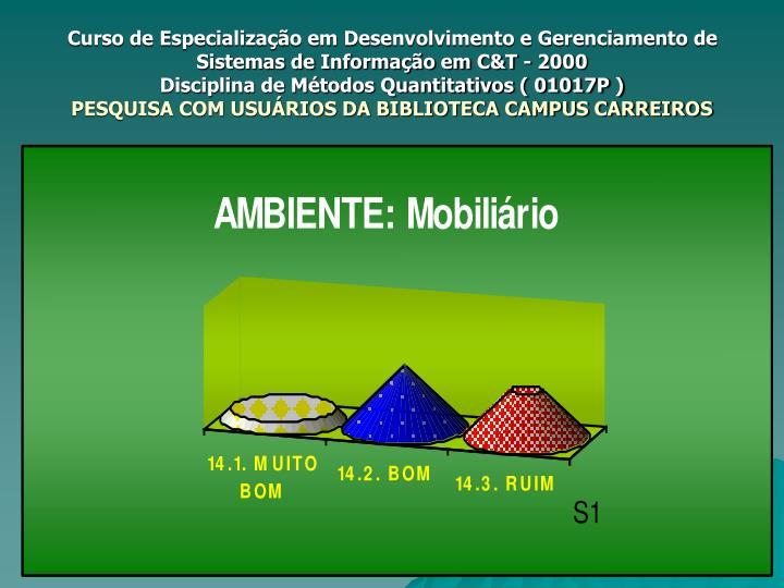 Curso de Especialização em Desenvolvimento e Gerenciamento de Sistemas de Informação em C&T - 2000