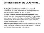 core functions of the caadp cont