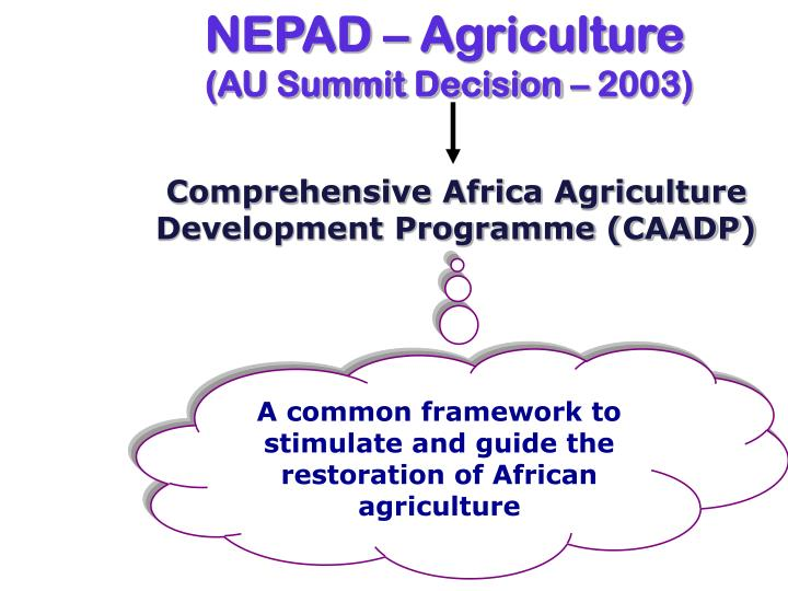 NEPAD – Agriculture