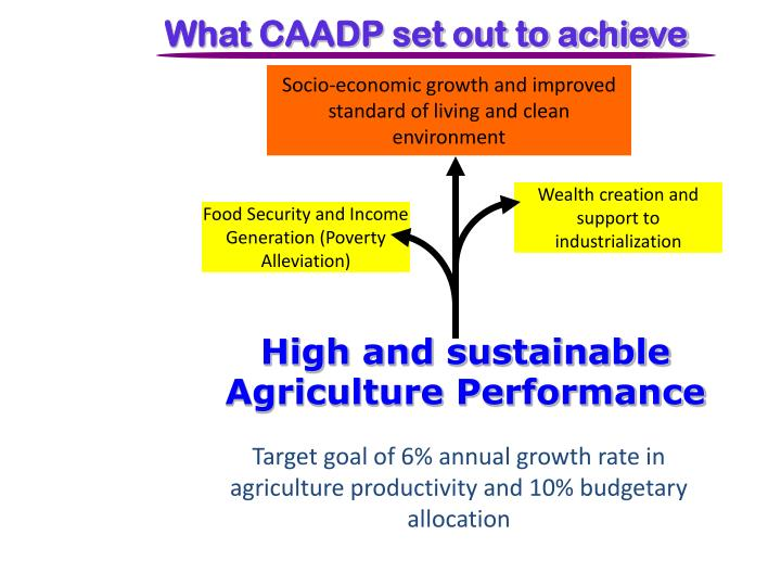 What CAADP set out to achieve
