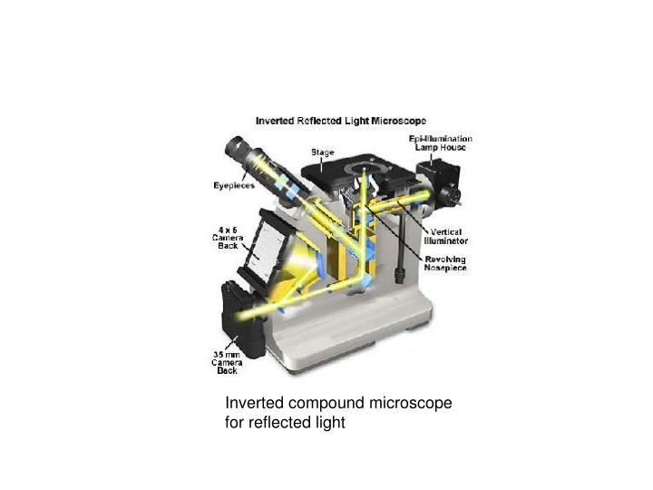 Inverted compound microscope