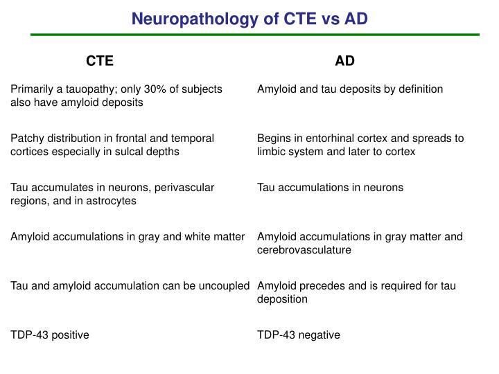 Neuropathology of CTE vs AD