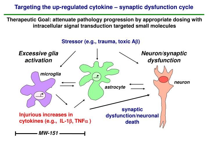 Targeting the up-regulated cytokine – synaptic dysfunction cycle
