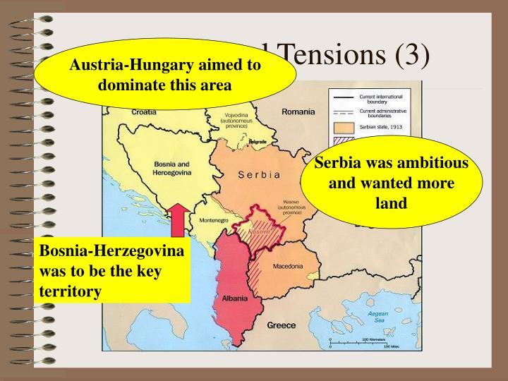Bosnia-Herzegovina was to be the key territory