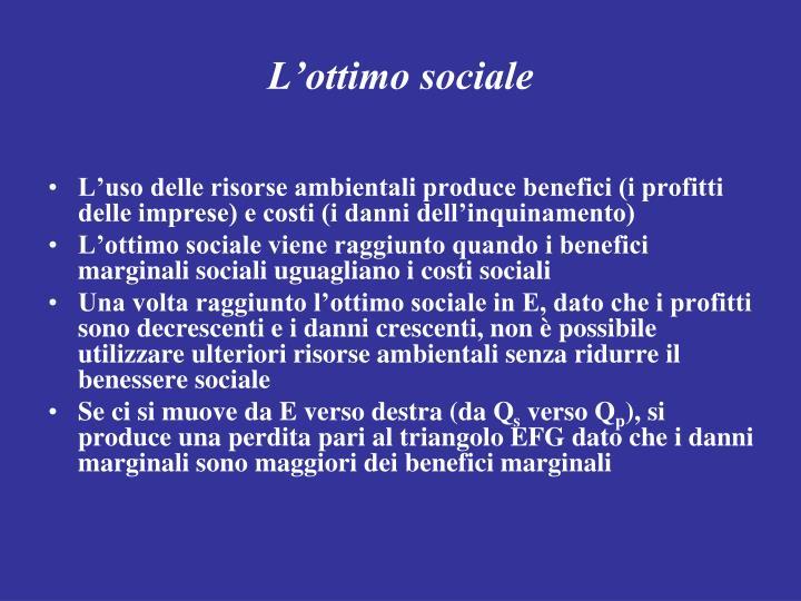 L'ottimo sociale