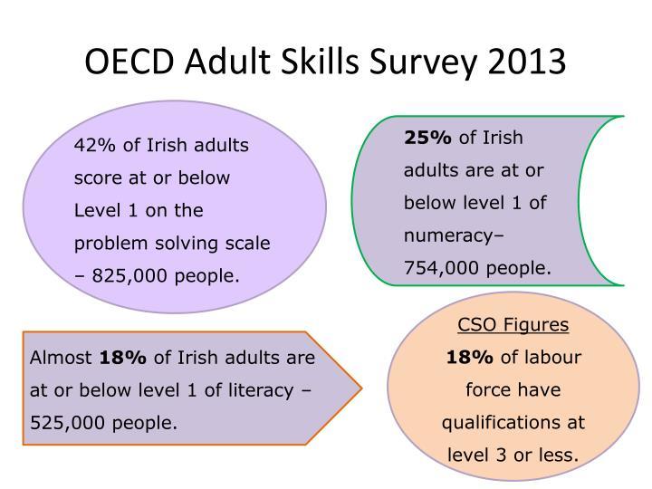 OECD Adult Skills Survey 2013