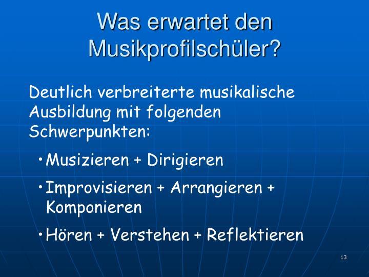 Was erwartet den Musikprofilschüler?
