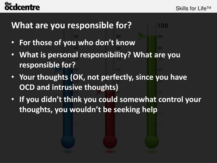 What are you responsible for?
