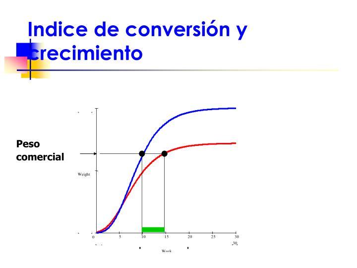 Indice de conversión y  crecimiento