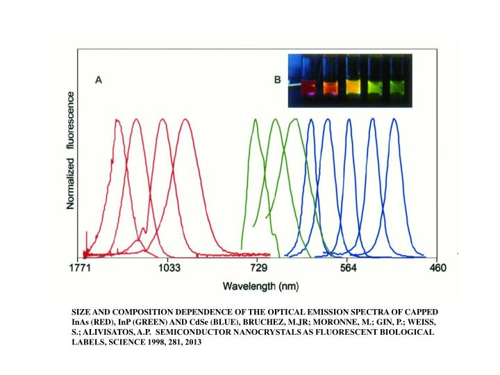 SIZE AND COMPOSITION DEPENDENCE OF THE OPTICAL EMISSION SPECTRA OF CAPPED InAs (RED), InP (GREEN) AND CdSe (BLUE), BRUCHEZ, M.JR; MORONNE, M.; GIN, P.; WEISS, S.; ALIVISATOS, A.P.