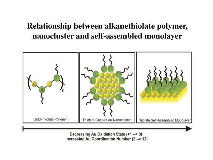 Relationship between alkanethiolate polymer, nanocluster and self-assembled monolayer