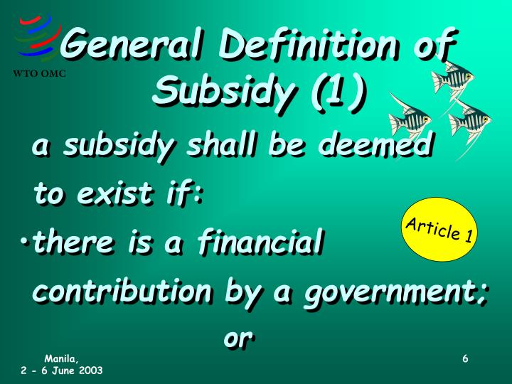 General Definition of Subsidy (1)
