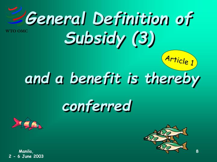 General Definition of Subsidy (3)