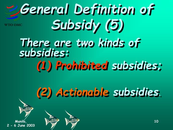 General Definition of Subsidy (5)