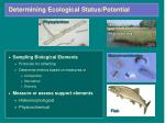 determining ecological status potential