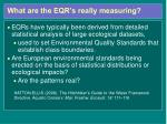 what are the eqr s really measuring