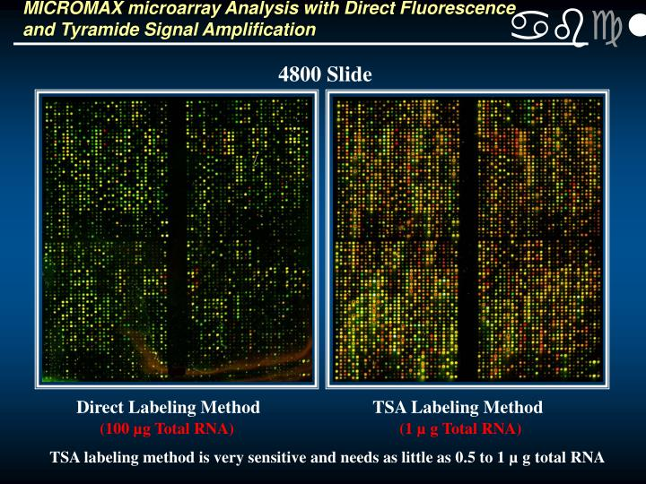 MICROMAX microarray Analysis with Direct Fluorescence and Tyramide Signal Amplification