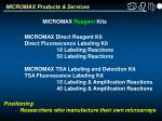micromax products services1