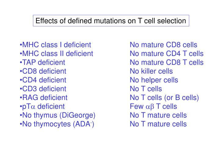 Effects of defined mutations on T cell selection