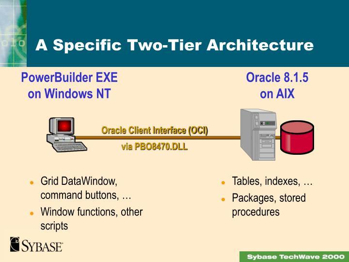 A Specific Two-Tier Architecture