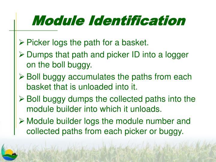 Module Identification