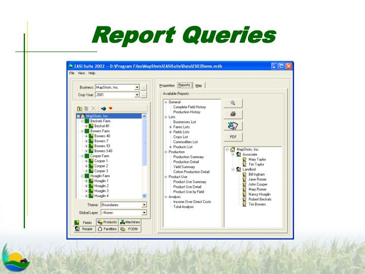 Report Queries