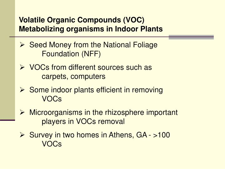 Volatile Organic Compounds (VOC) Metabolizing organisms in Indoor Plants