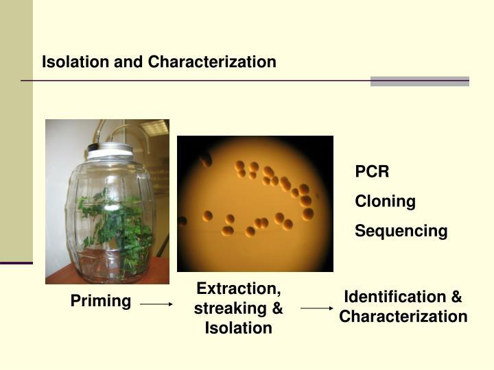 Isolation and Characterization