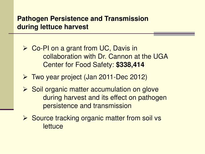 Pathogen Persistence and Transmission during lettuce harvest