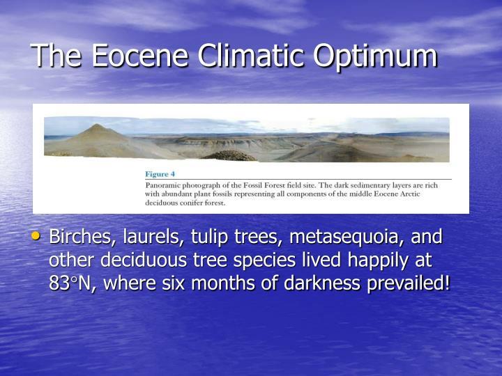 The Eocene Climatic Optimum