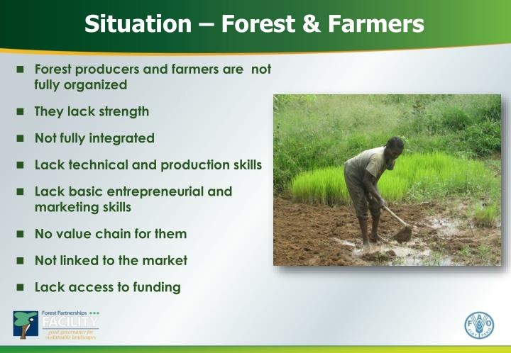 Situation – Forest & Farmers