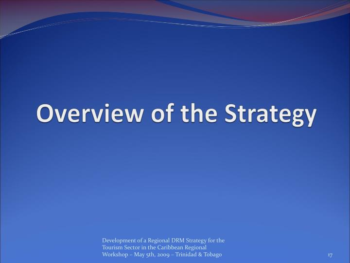 Overview of the Strategy